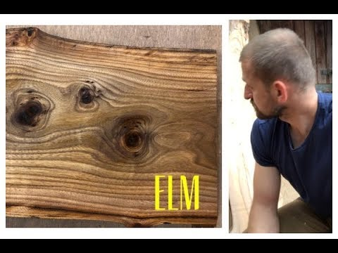 Things you should know about Elm wood!