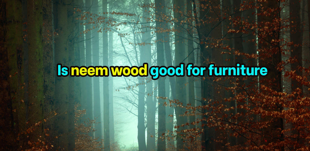 Is neem wood good for furniture