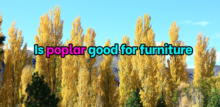 Is poplar good for furniture